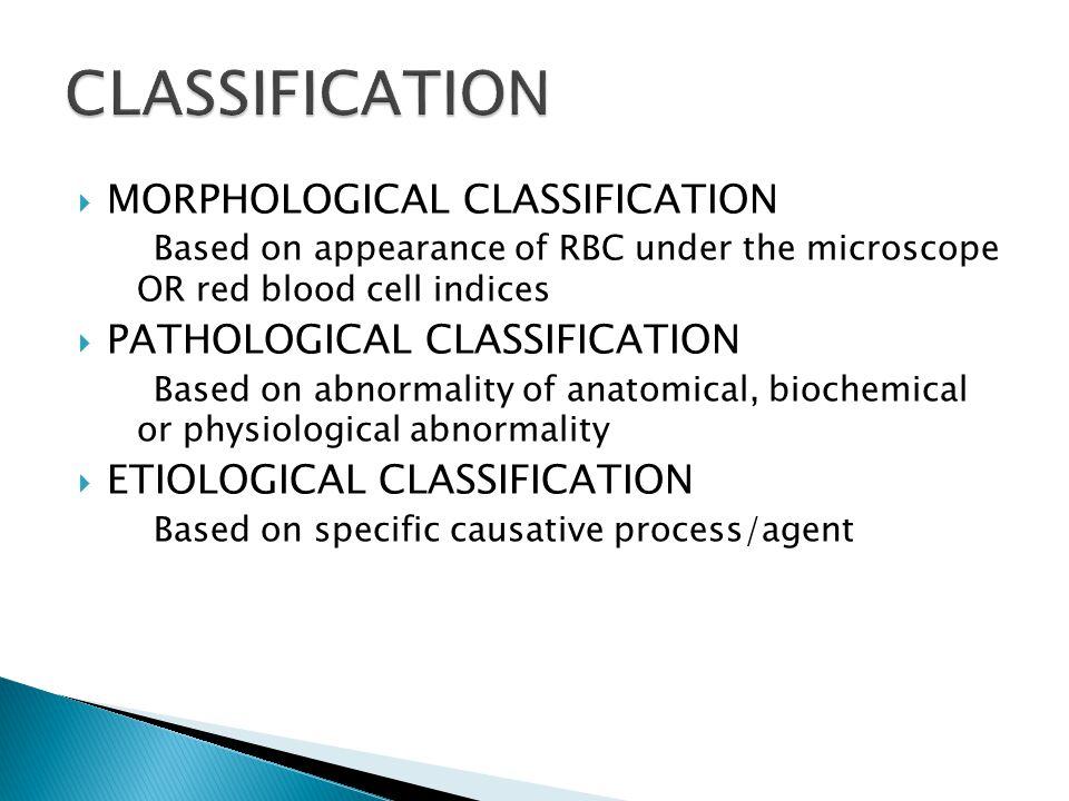 CLASSIFICATION MORPHOLOGICAL CLASSIFICATION