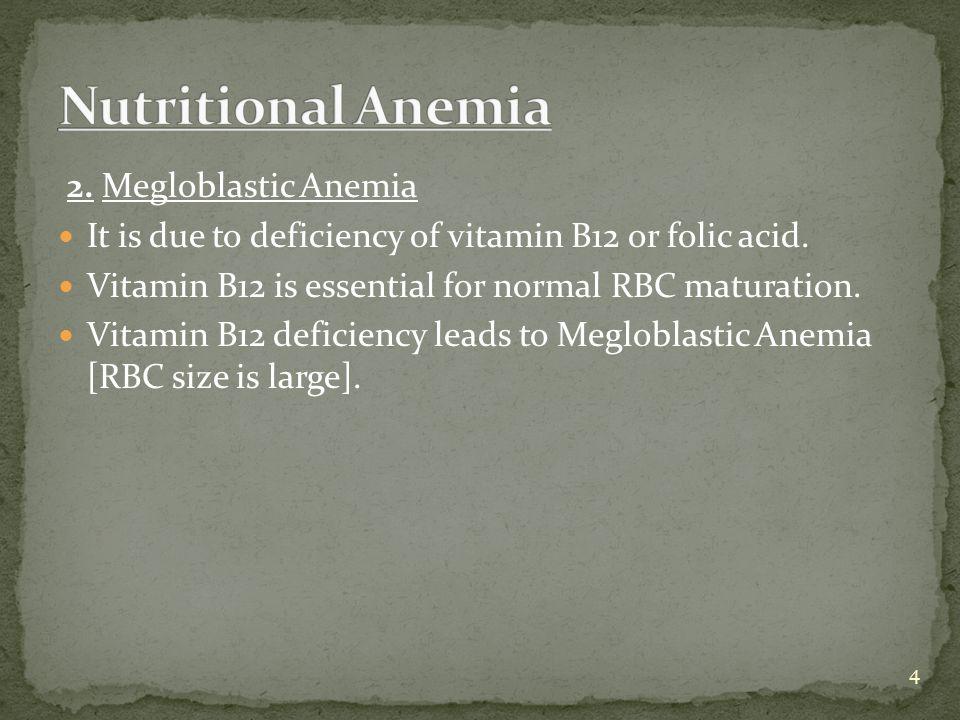 Nutritional Anemia 2. Megloblastic Anemia