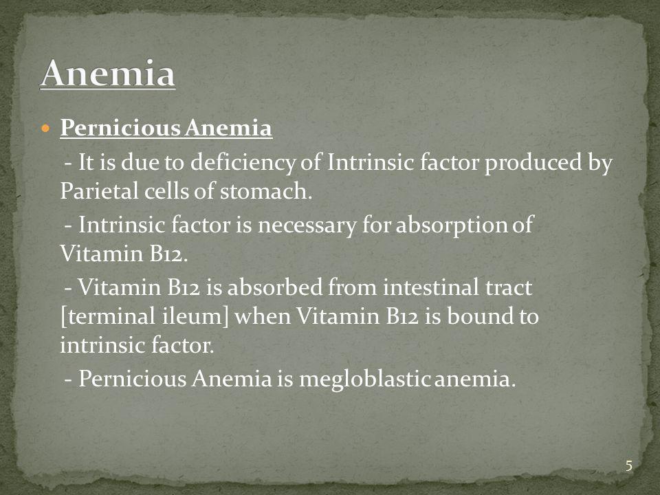 Anemia Pernicious Anemia