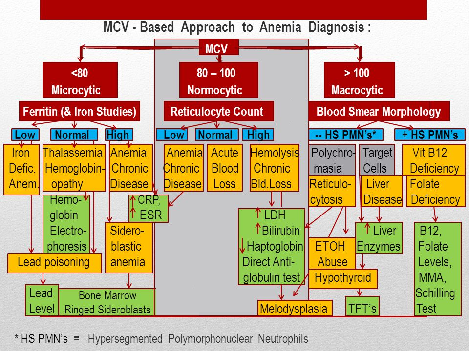 MCV - Based Approach to Anemia Diagnosis :