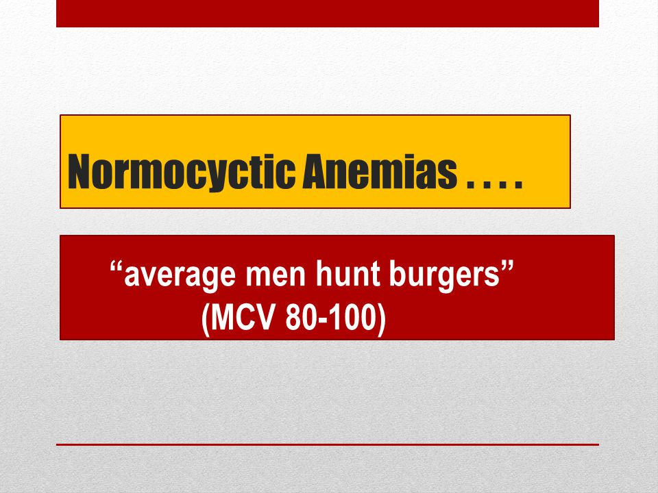 Normocyctic Anemias . . . . average men hunt burgers (MCV 80-100)