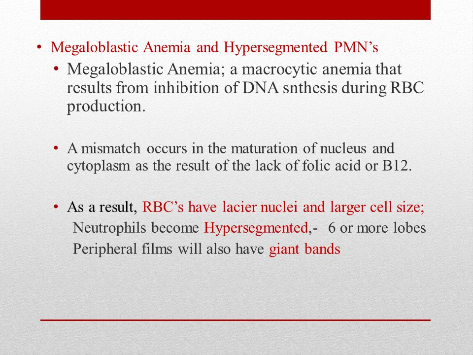 Megaloblastic Anemia and Hypersegmented PMN's