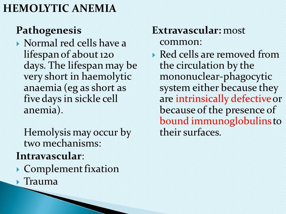 HEMOLYTIC ANEMIA Pathogenesis