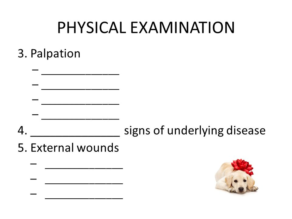 PHYSICAL EXAMINATION 3. Palpation