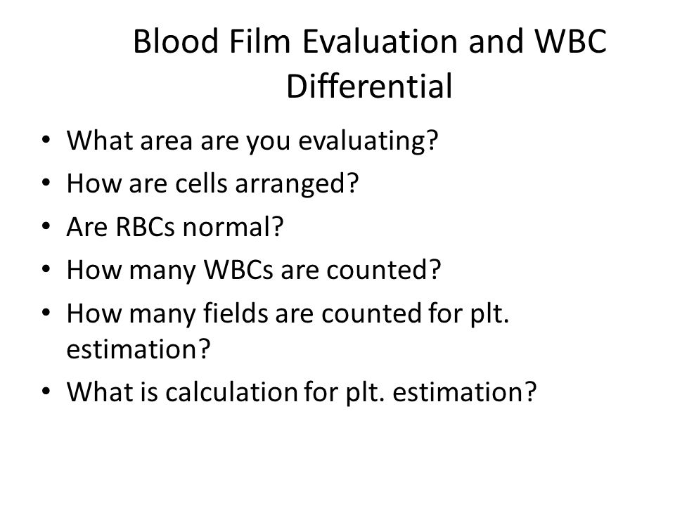 Blood Film Evaluation and WBC Differential