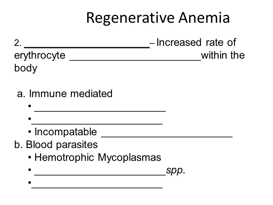Regenerative Anemia a. Immune mediated ______________________