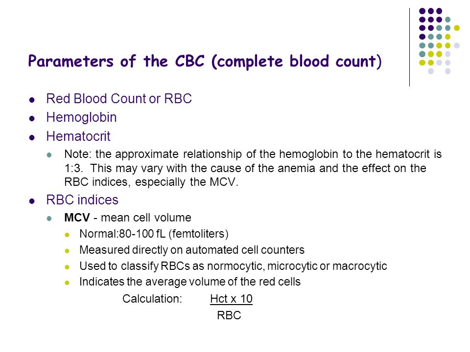 Parameters of the CBC (complete blood count)