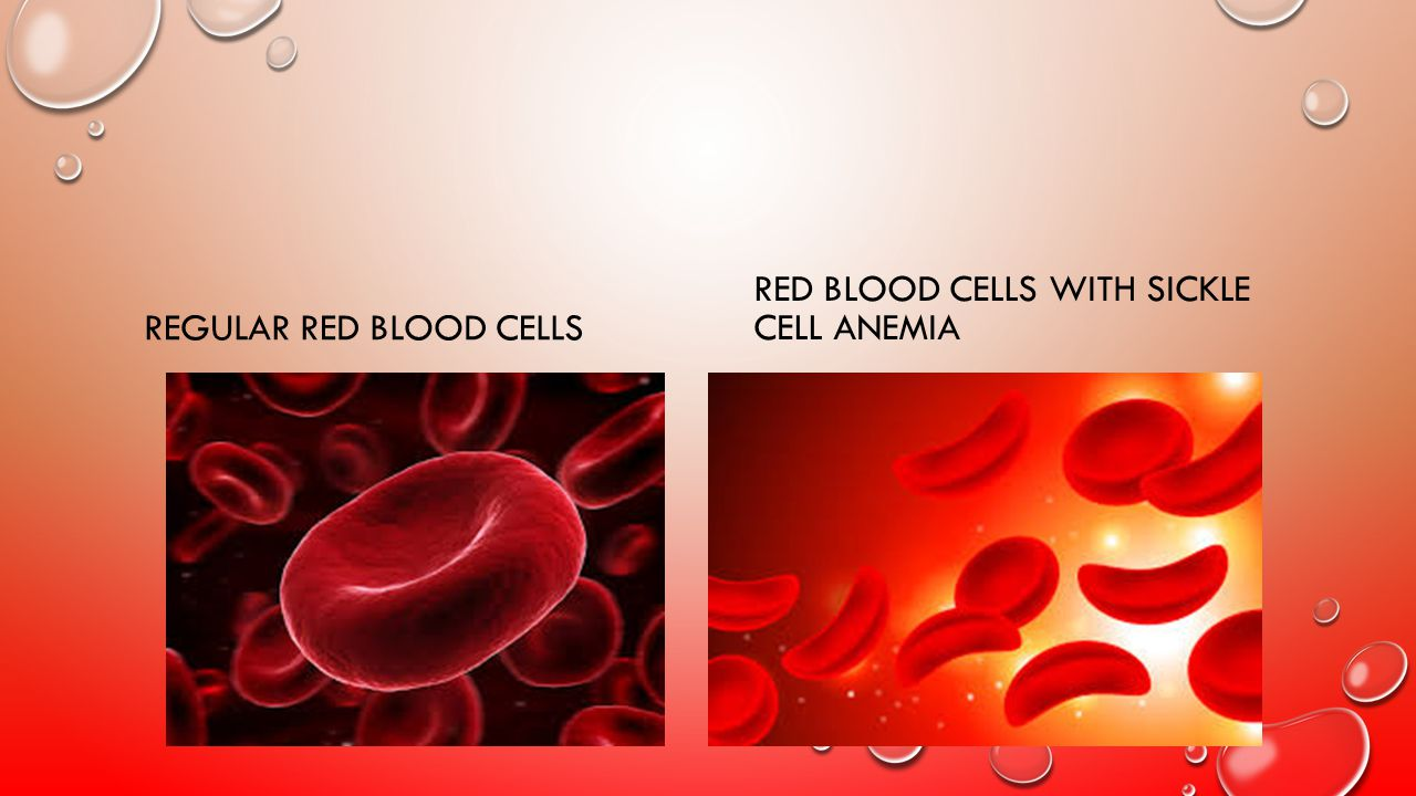 Regular Red Blood Cells