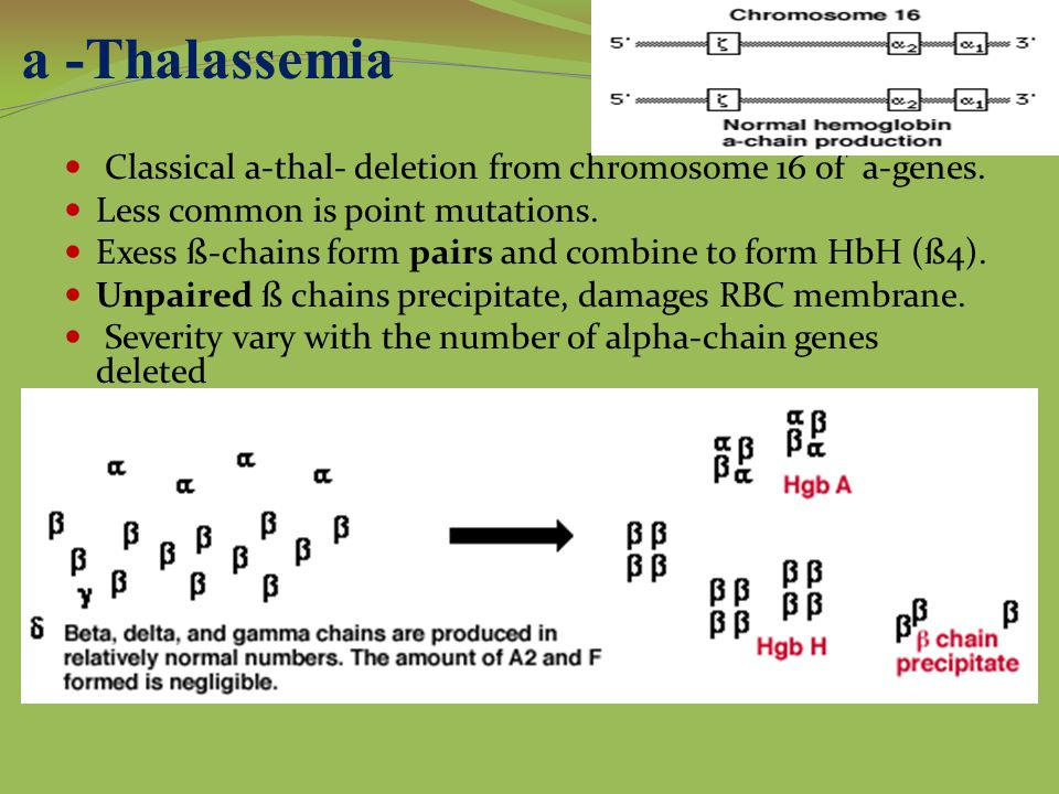 a -Thalassemia Classical a-thal- deletion from chromosome 16 of a-genes. Less common is point mutations.