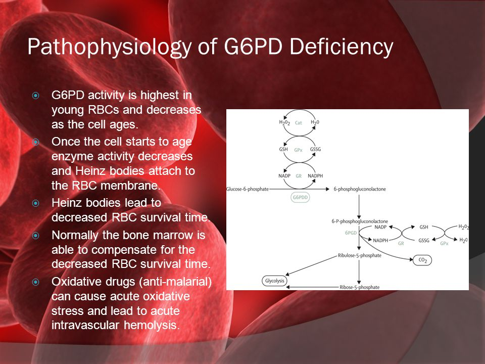 Pathophysiology of G6PD Deficiency