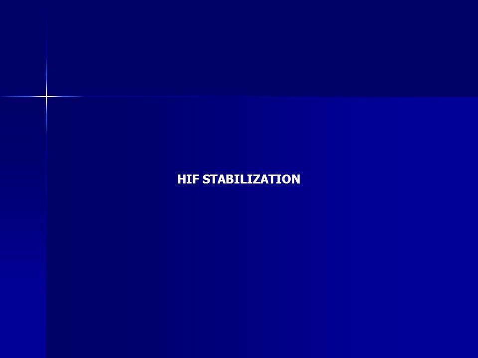 HIF STABILIZATION