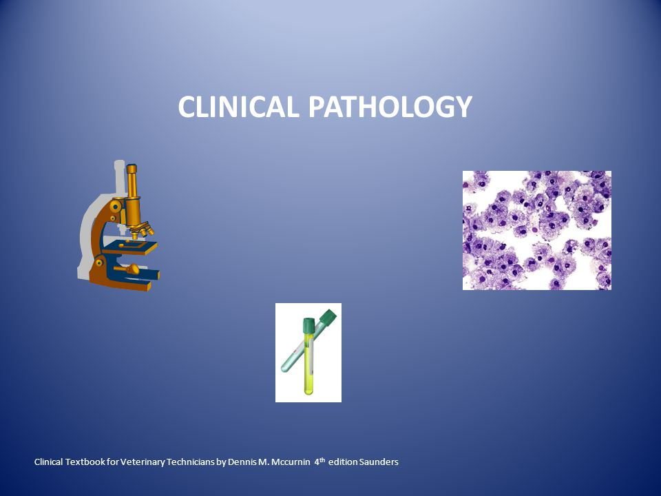 CLINICAL PATHOLOGY Clinical Textbook for Veterinary Technicians by Dennis M.
