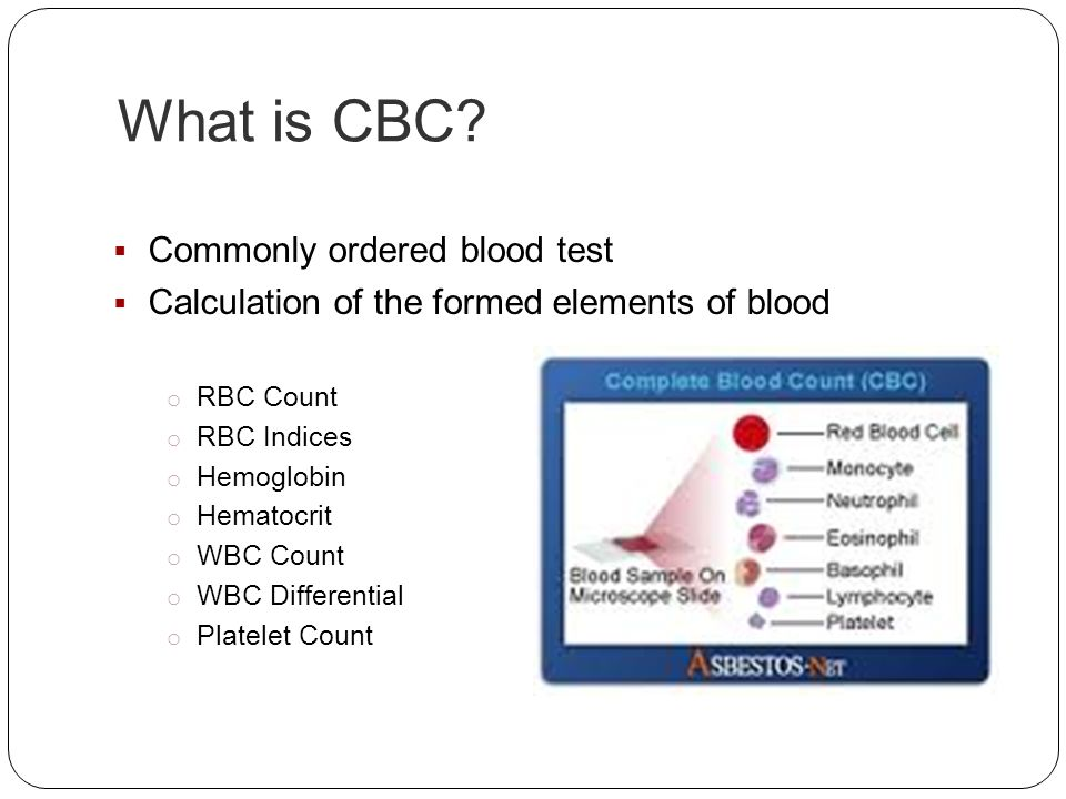 What is CBC Commonly ordered blood test
