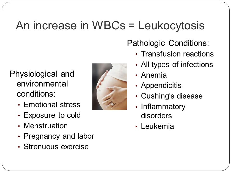 An increase in WBCs = Leukocytosis