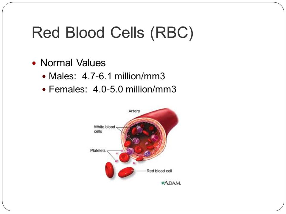 Red Blood Cells (RBC) Normal Values Males: 4.7-6.1 million/mm3