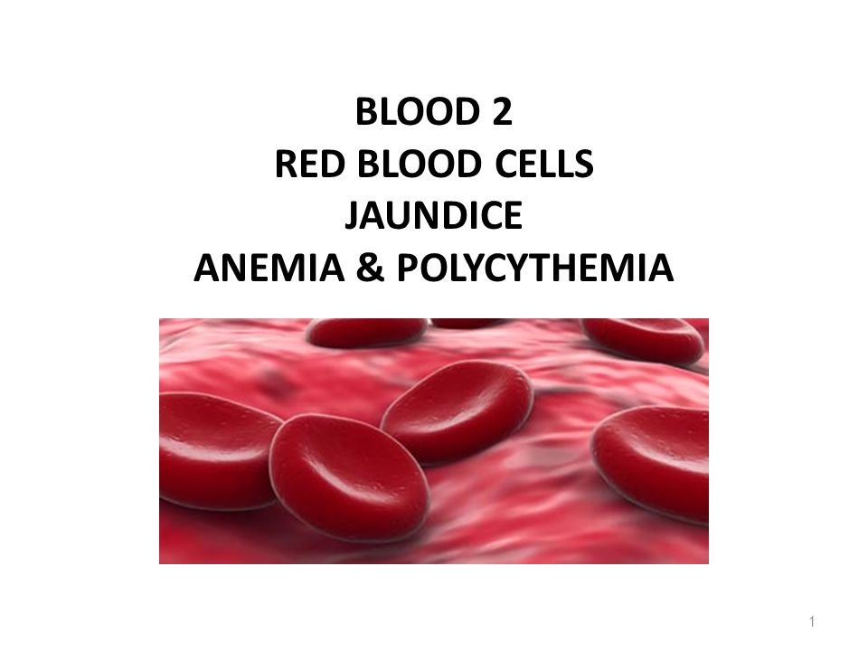 BLOOD 2 RED BLOOD CELLS JAUNDICE ANEMIA & POLYCYTHEMIA