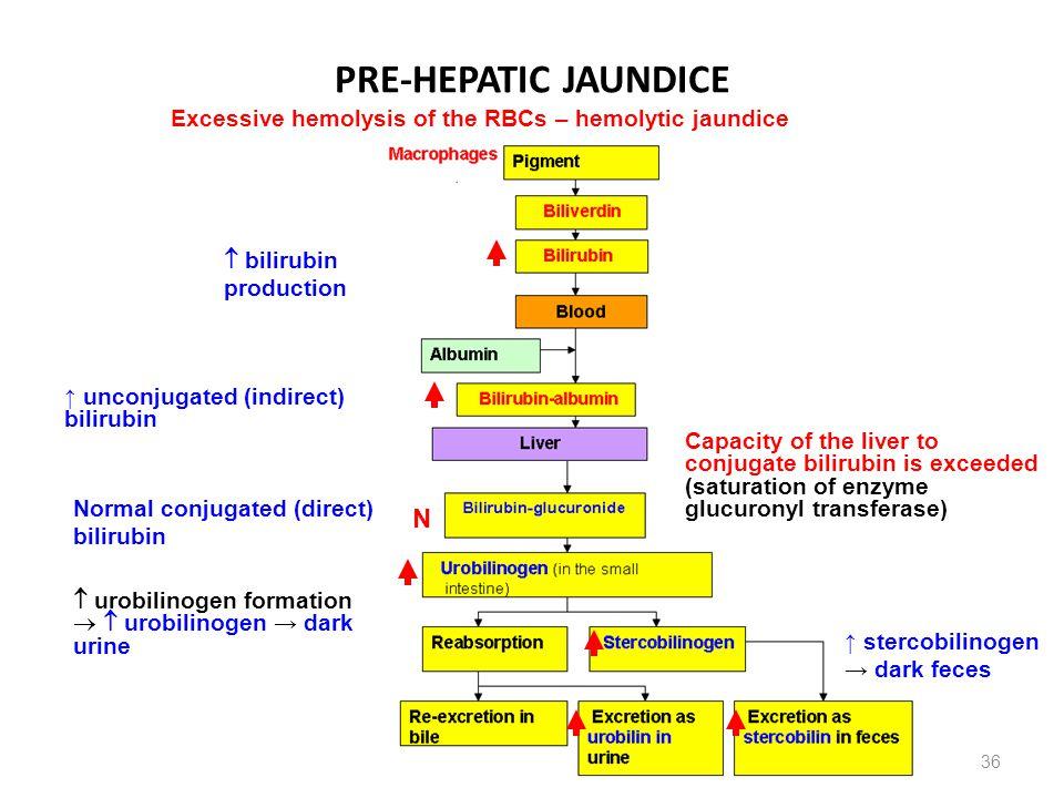 PRE-HEPATIC JAUNDICE N