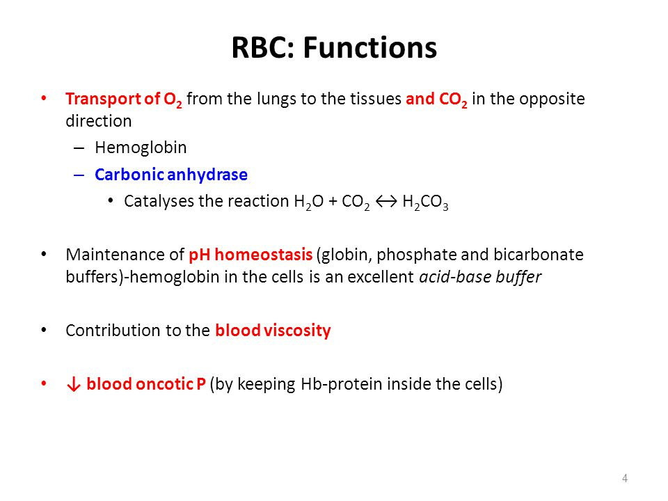 RBC: Functions Transport of O2 from the lungs to the tissues and CO2 in the opposite direction. Hemoglobin.