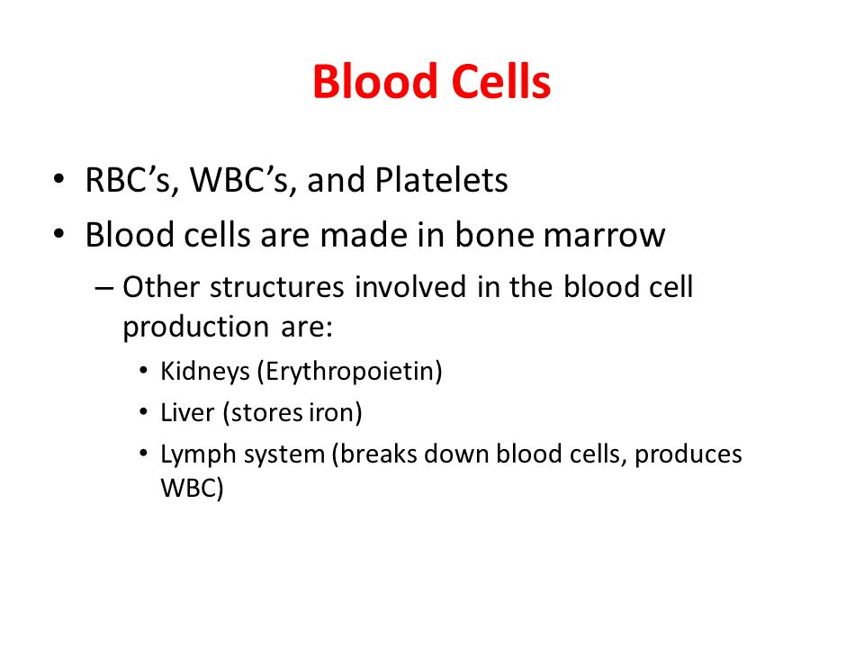 Blood Cells RBC's, WBC's, and Platelets