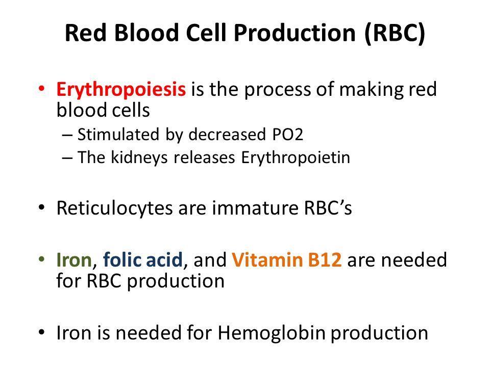 Red Blood Cell Production (RBC)