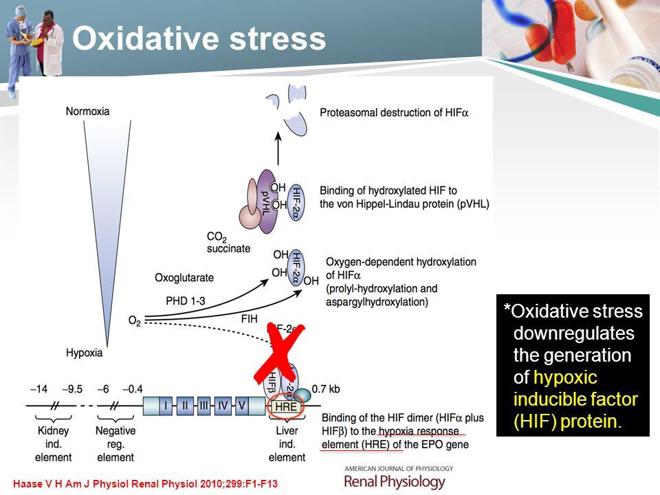 ✗ Oxidative stress *Oxidative stress downregulates the generation