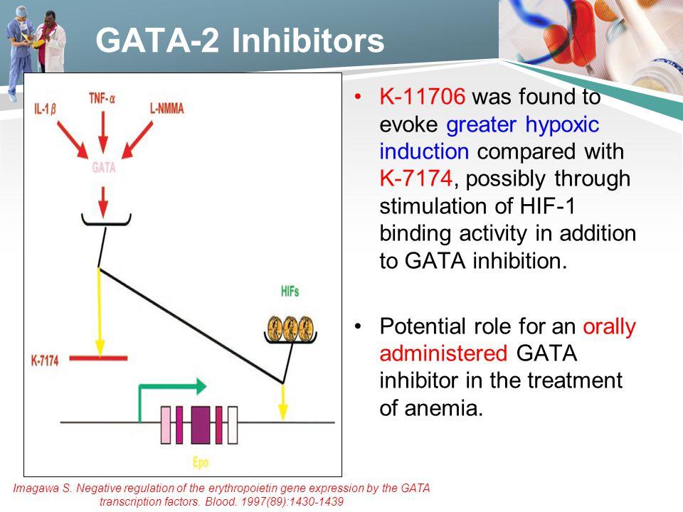 GATA-2 Inhibitors