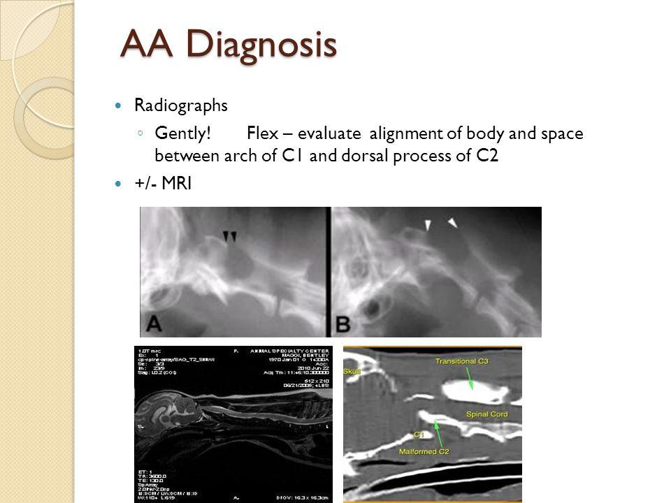 AA Diagnosis Radiographs