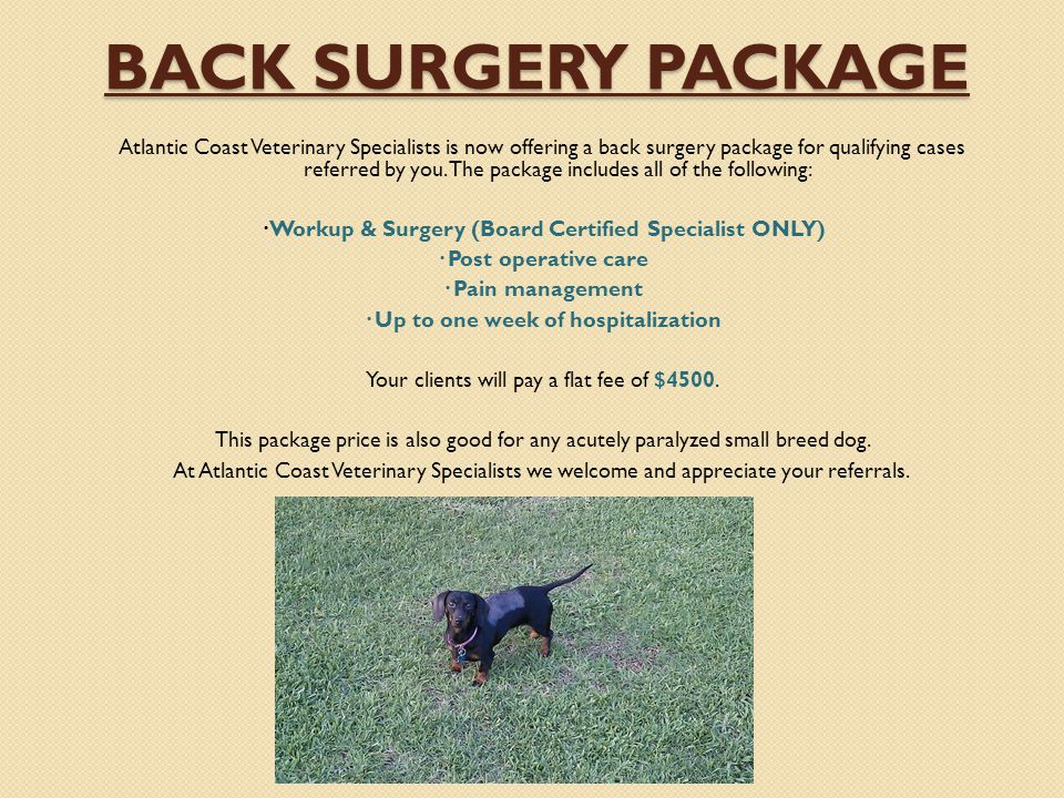 Back Surgery Package