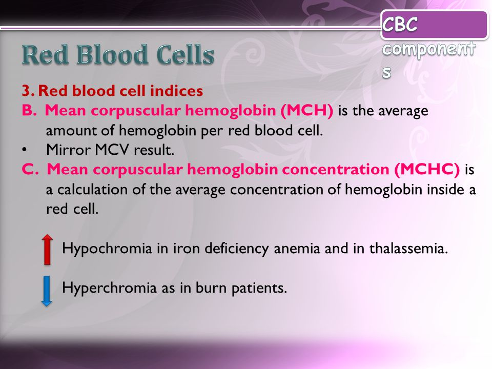 Red Blood Cells CBC components 3. Red blood cell indices