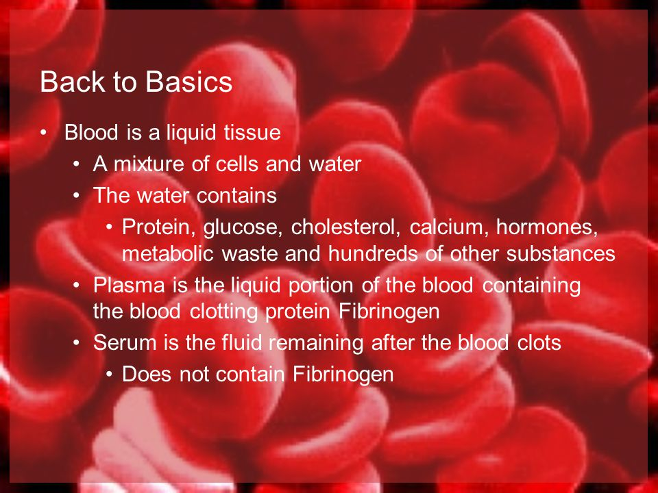 Back to Basics Blood is a liquid tissue A mixture of cells and water