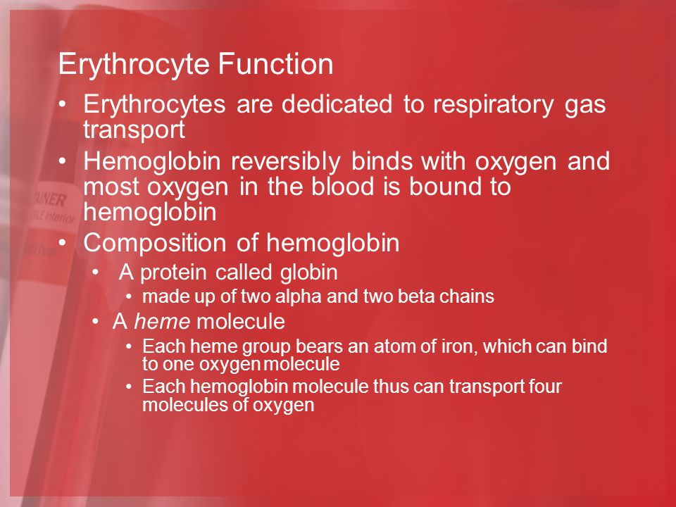 Erythrocyte Function Erythrocytes are dedicated to respiratory gas transport.