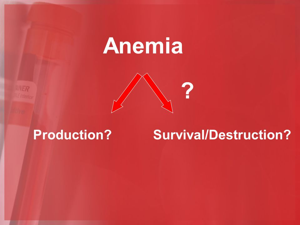 Anemia Production Survival/Destruction