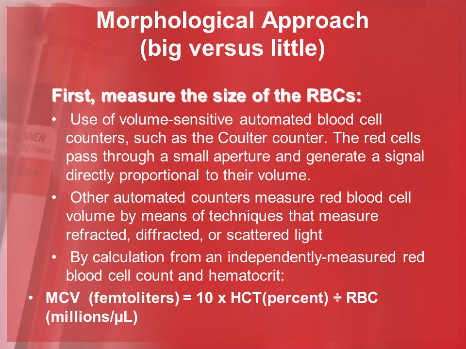 Morphological Approach (big versus little)