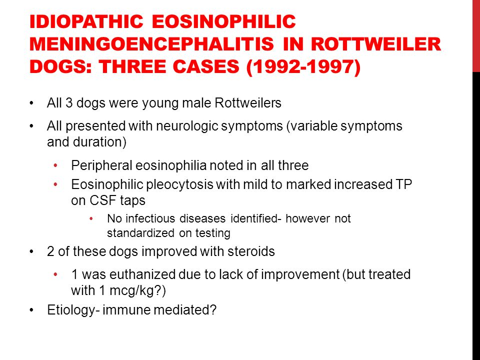 Idiopathic eosinophilic meningoencephalitis in Rottweiler dogs: three cases (1992-1997)