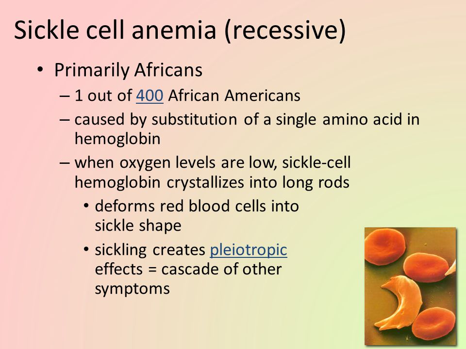 Sickle cell anemia (recessive)