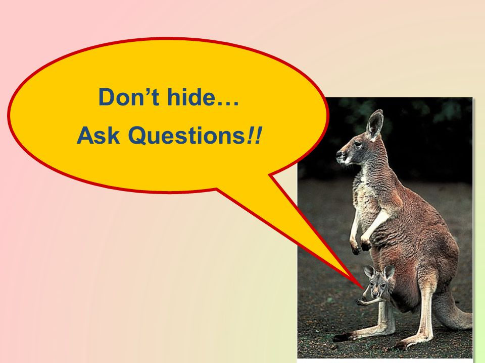 Don't hide… Ask Questions!!