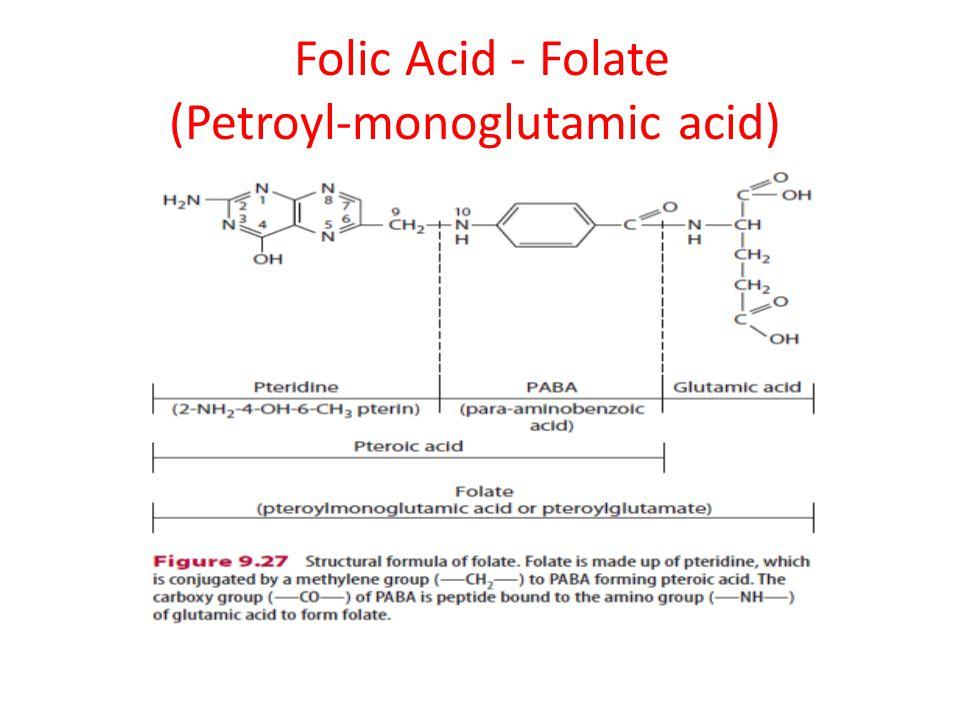 Folic Acid - Folate (Petroyl-monoglutamic acid)