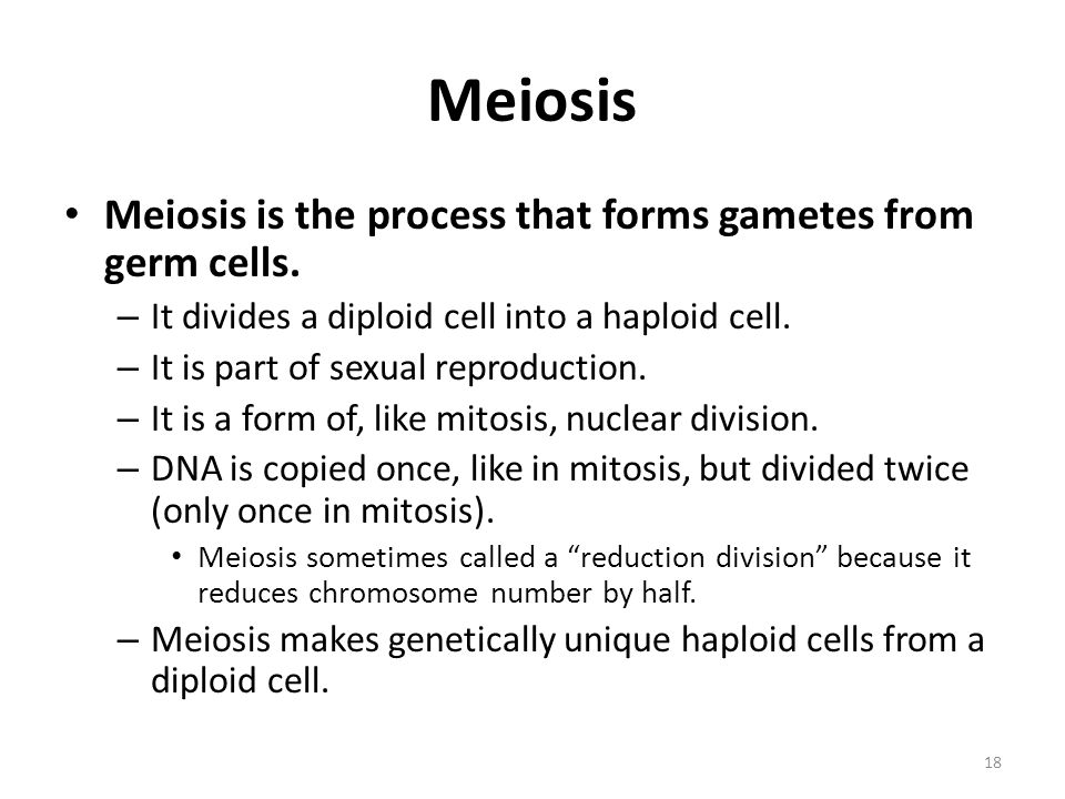 Meiosis Meiosis is the process that forms gametes from germ cells.