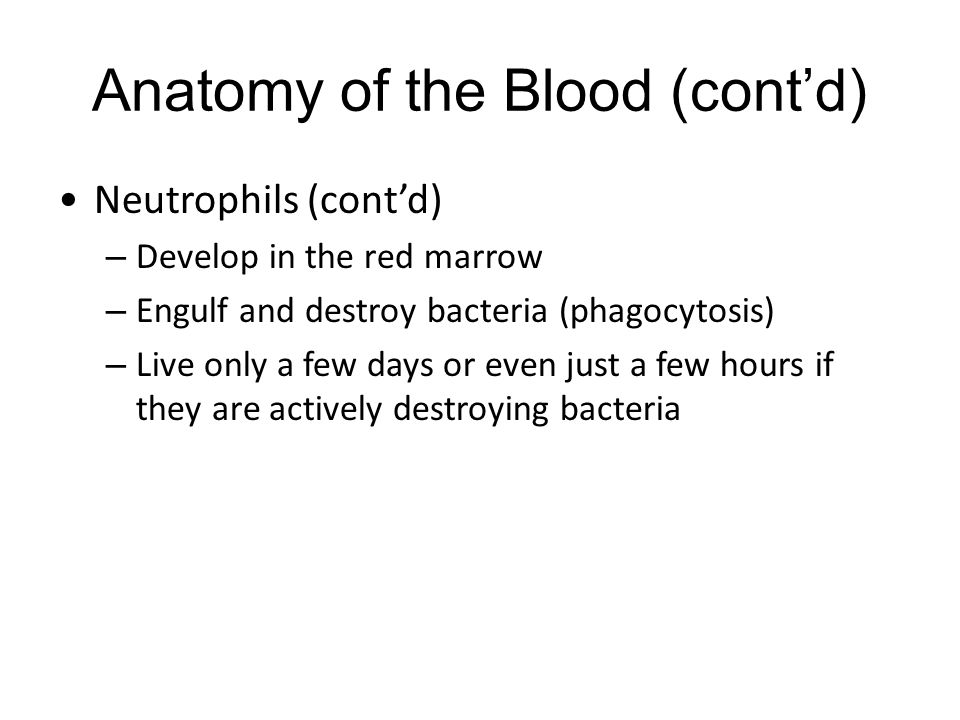 Anatomy of the Blood (cont'd)