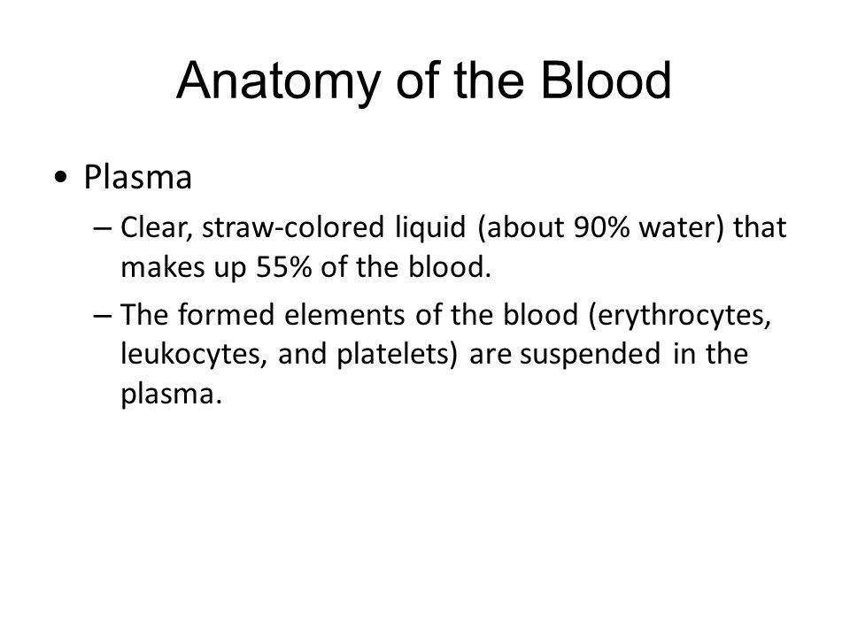 Anatomy of the Blood Plasma