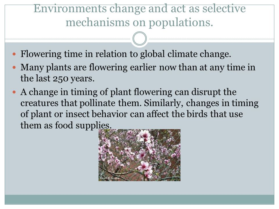 Environments change and act as selective mechanisms on populations.