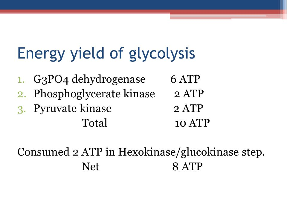 Energy yield of glycolysis