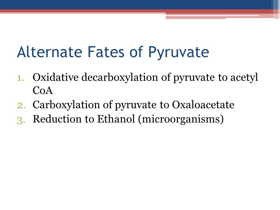 Alternate Fates of Pyruvate
