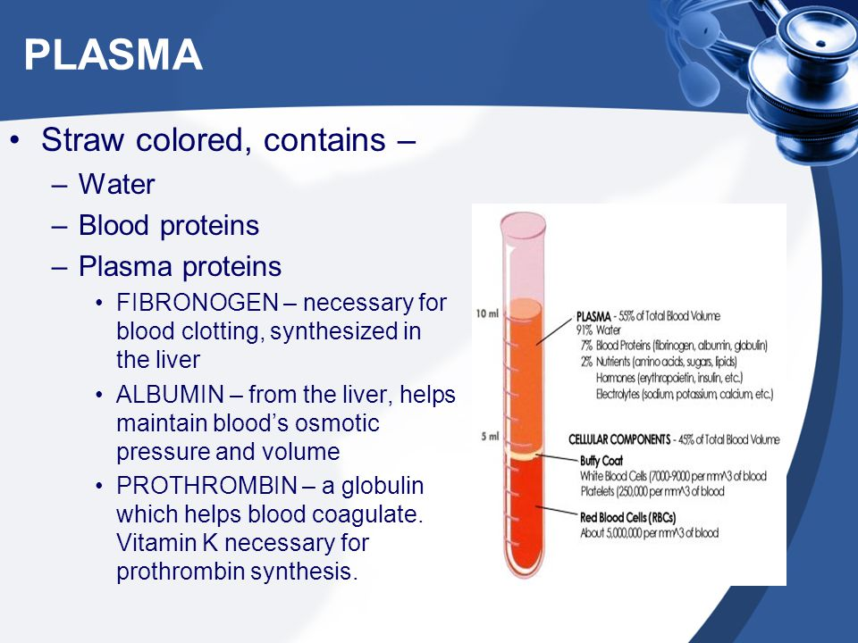 PLASMA Straw colored, contains – Water Blood proteins Plasma proteins