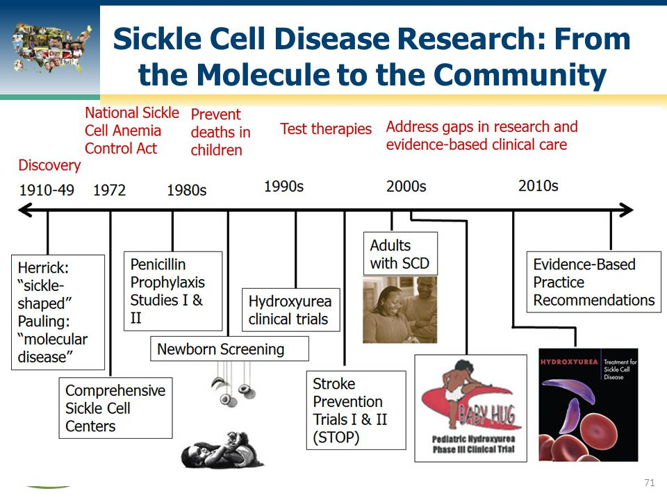 Sickle Cell Disease Research: From the Molecule to the Community