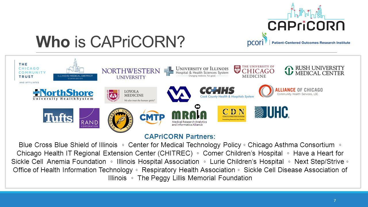 Who is CAPriCORN CAPriCORN Partners: