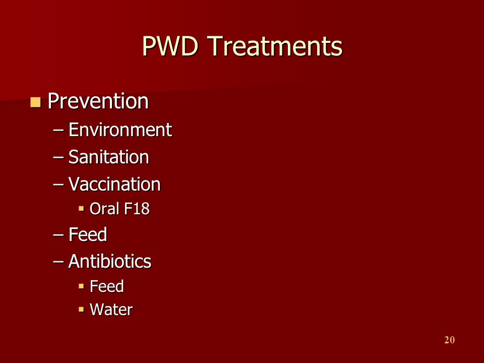 PWD Treatments Prevention Environment Sanitation Vaccination Feed