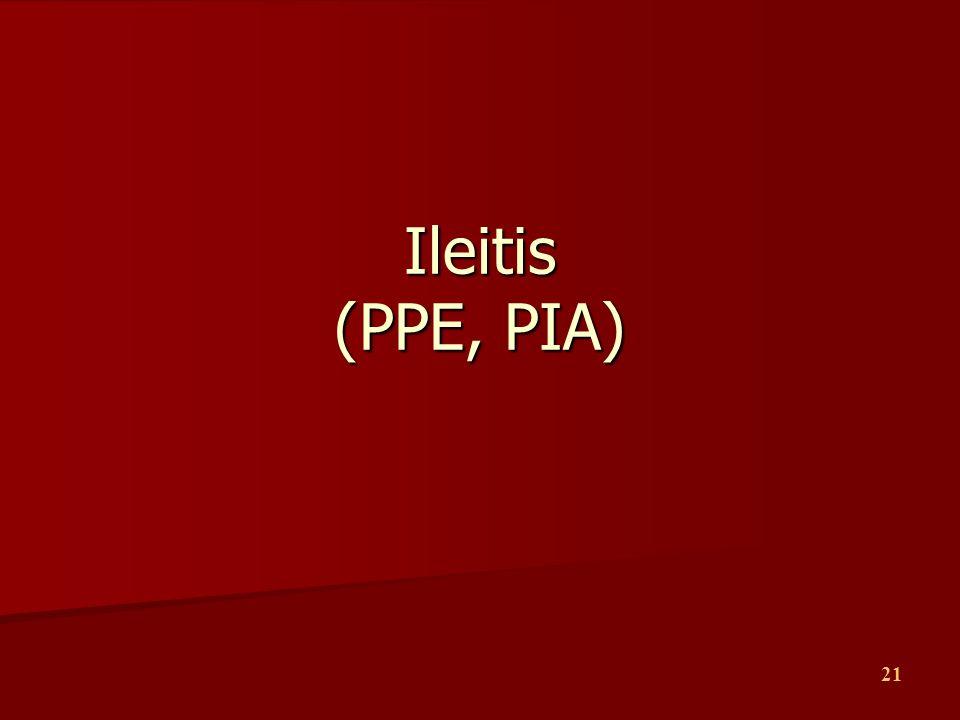 Ileitis (PPE, PIA)