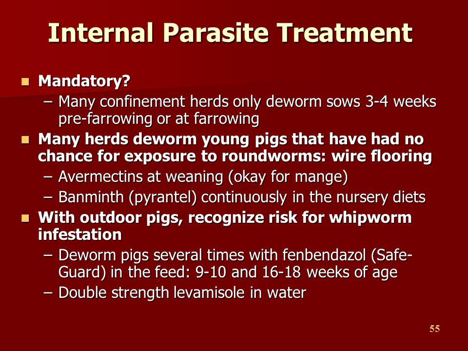 Internal Parasite Treatment