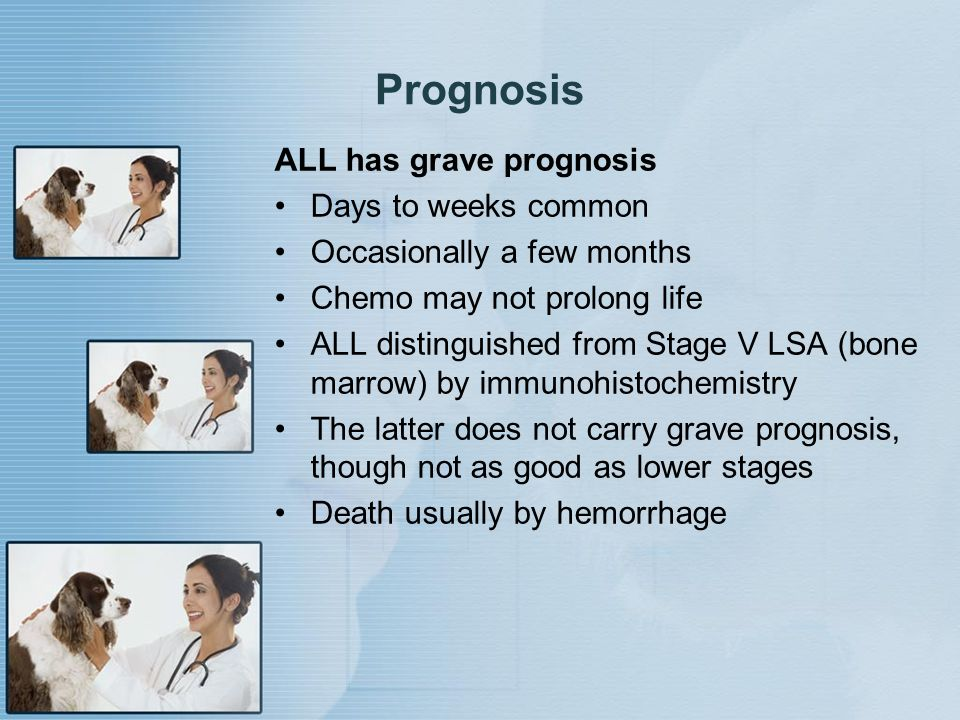 Prognosis ALL has grave prognosis Days to weeks common